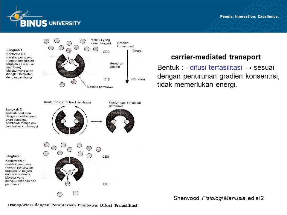 carrier-mediated transport