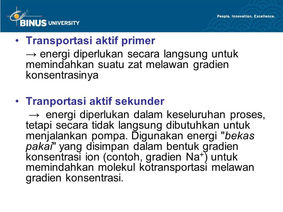 Transportasi aktif primer