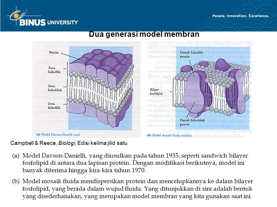 Dua generasi model membran