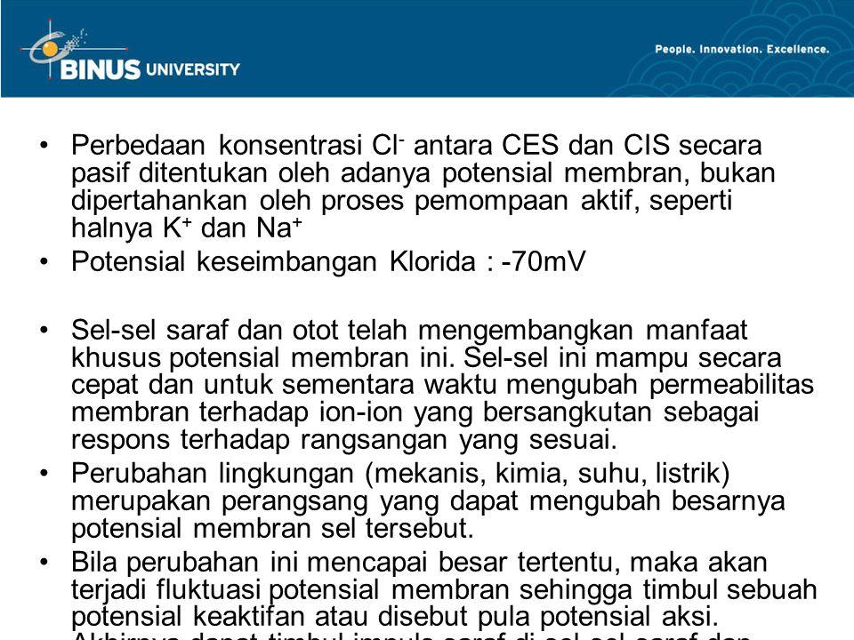 Perbedaan konsentrasi Cl- antara CES dan CIS secara pasif ditentukan oleh adanya potensial membran, bukan dipertahankan oleh proses pemompaan aktif, seperti halnya K+ dan Na+
