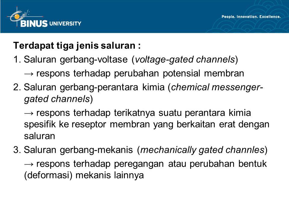 Terdapat tiga jenis saluran :
