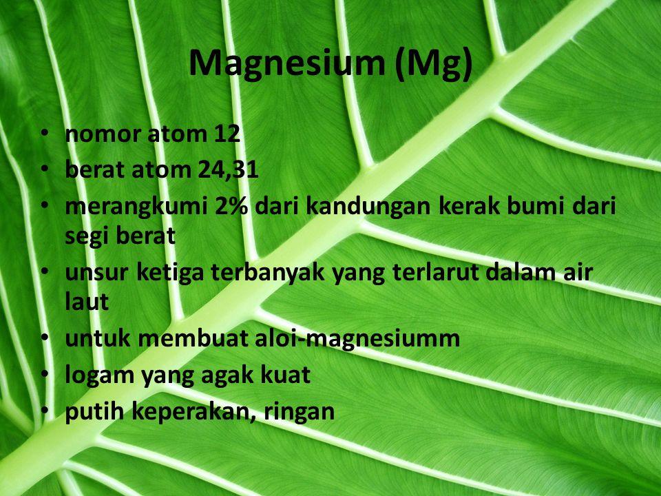 Magnesium (Mg) nomor atom 12 berat atom 24,31