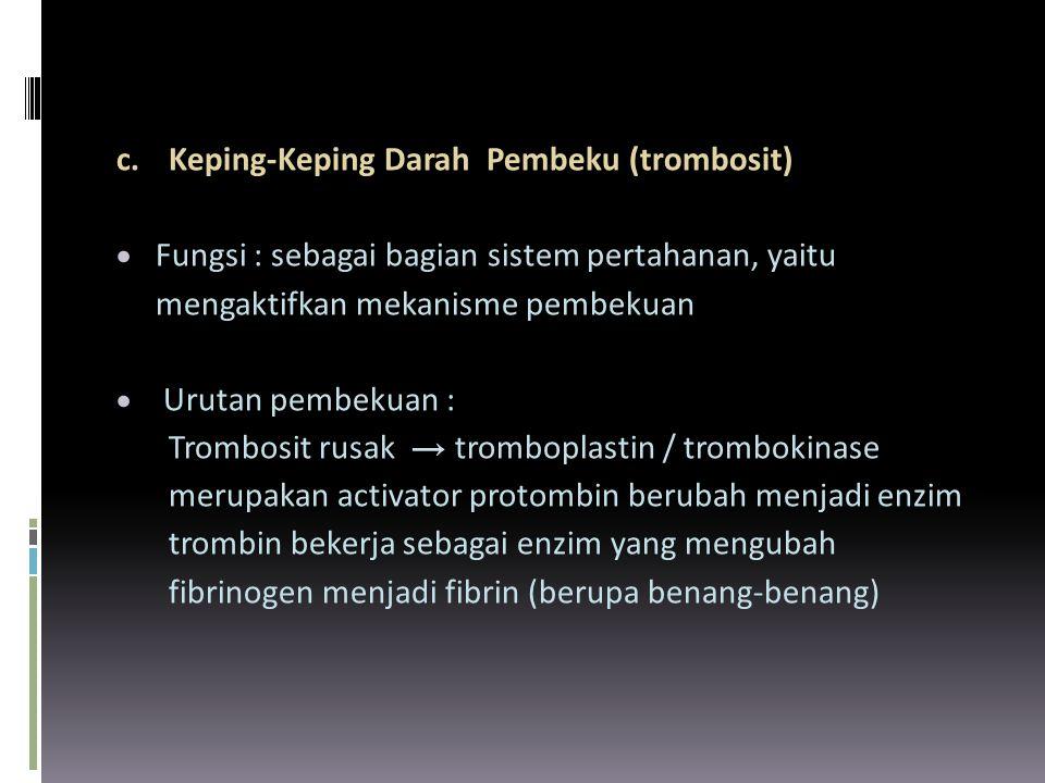 c. Keping-Keping Darah Pembeku (trombosit)