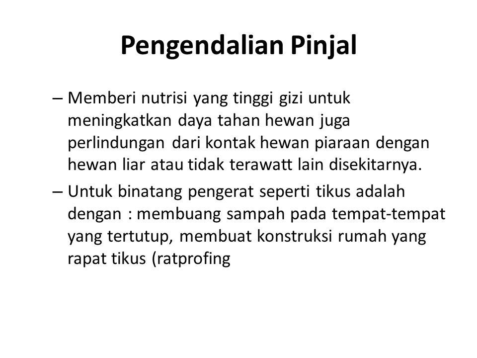 Pengendalian Pinjal