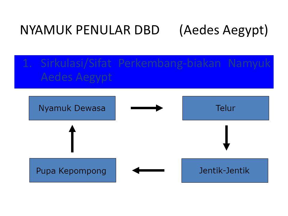 NYAMUK PENULAR DBD (Aedes Aegypt)