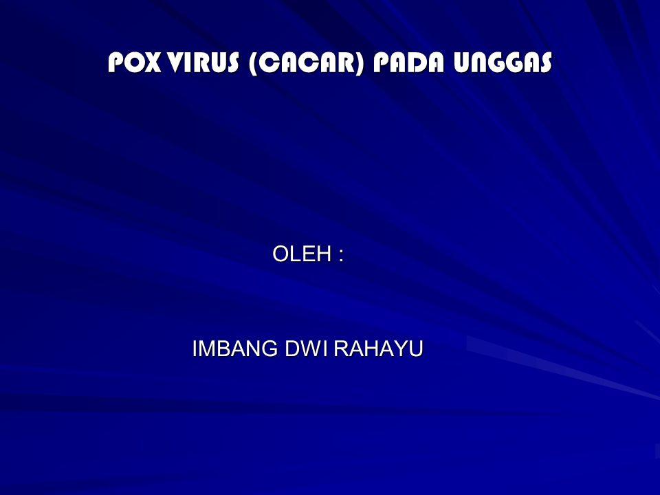 POX VIRUS (CACAR) PADA UNGGAS