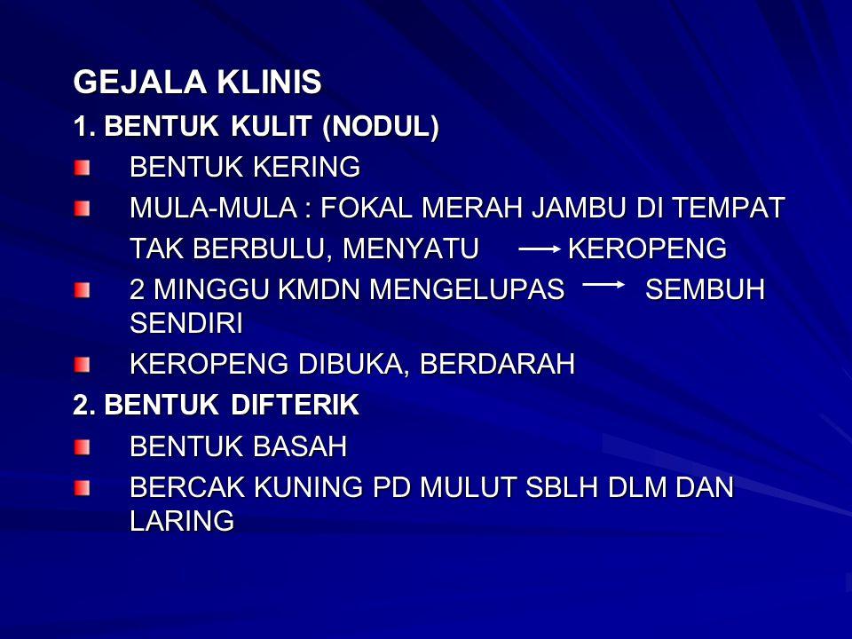 GEJALA KLINIS 1. BENTUK KULIT (NODUL) BENTUK KERING
