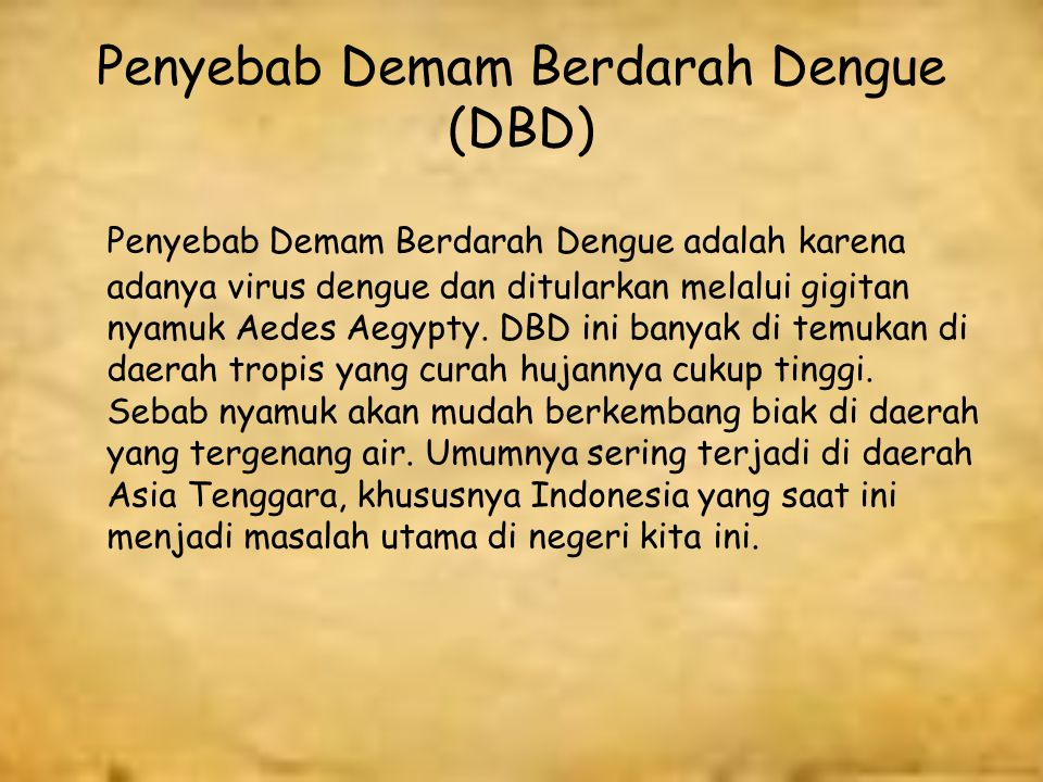 Penyebab Demam Berdarah Dengue (DBD)