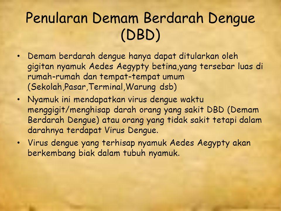 Penularan Demam Berdarah Dengue (DBD)