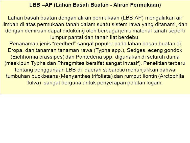 LBB –AP (Lahan Basah Buatan - Aliran Permukaan)