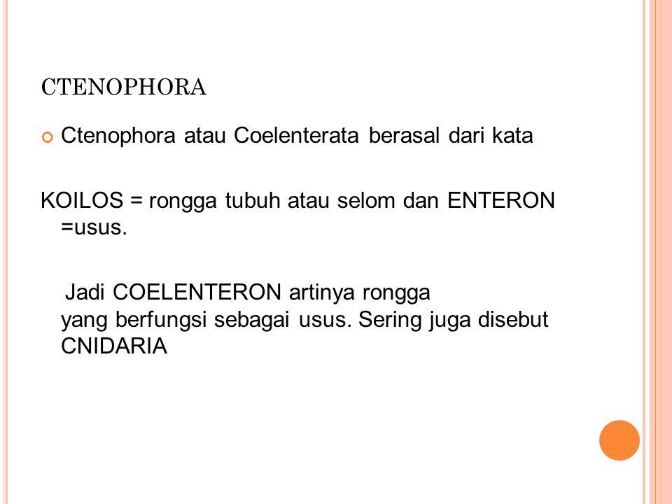 ctenophora Ctenophora atau Coelenterata berasal dari kata