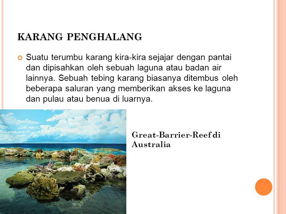 karang penghalang