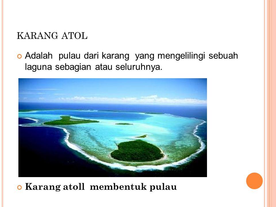 karang atol Adalah pulau dari karang yang mengelilingi sebuah laguna sebagian atau seluruhnya.