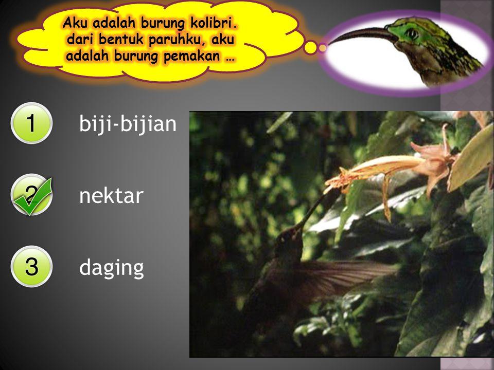 biji-bijian nektar daging