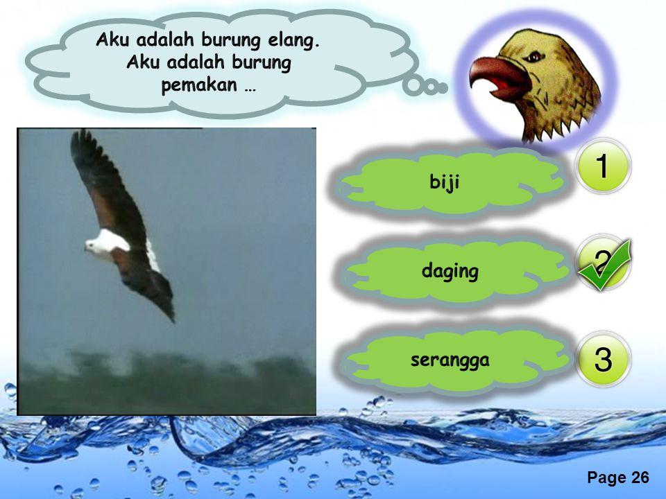 Aku adalah burung elang. Aku adalah burung pemakan …