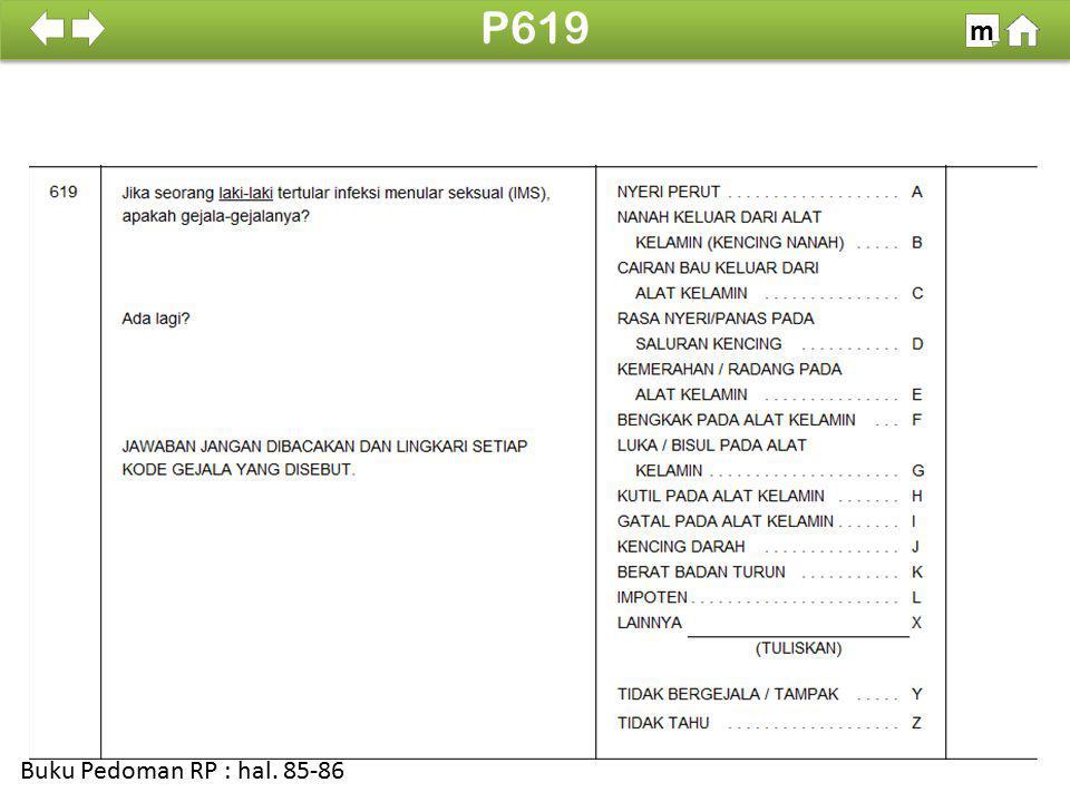 P619 m SDKI 2012 100% Buku Pedoman RP : hal. 85-86