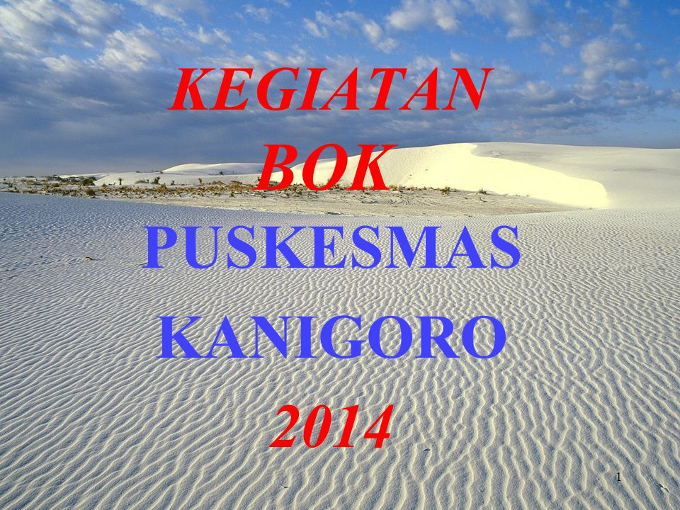 KEGIATAN BOK PUSKESMAS KANIGORO 2014