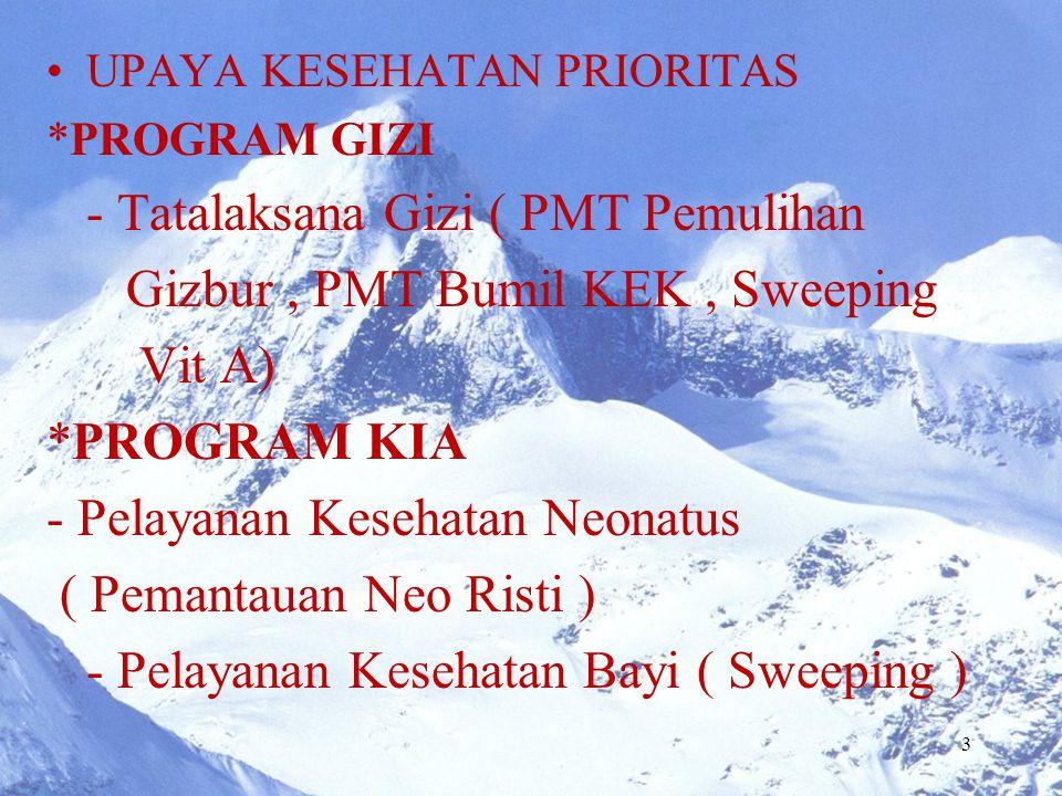 - Tatalaksana Gizi ( PMT Pemulihan Gizbur , PMT Bumil KEK , Sweeping