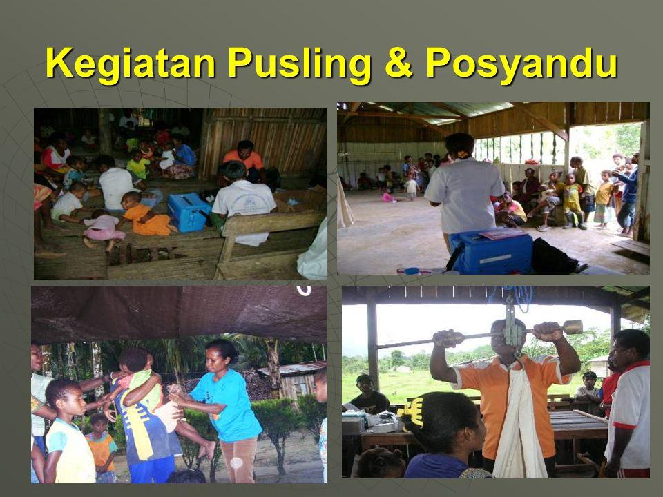 Kegiatan Pusling & Posyandu