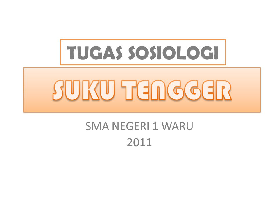 TUGAS SOSIOLOGI SUKU TENGGER SMA NEGERI 1 WARU 2011
