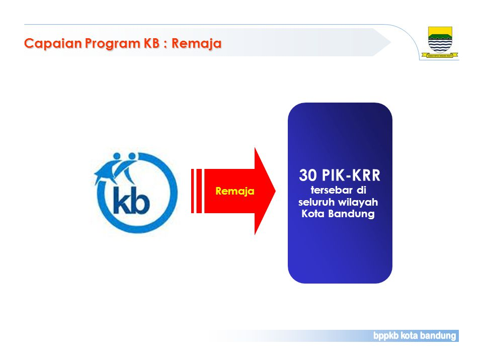 30 PIK-KRR Capaian Program KB : Remaja tersebar di seluruh wilayah