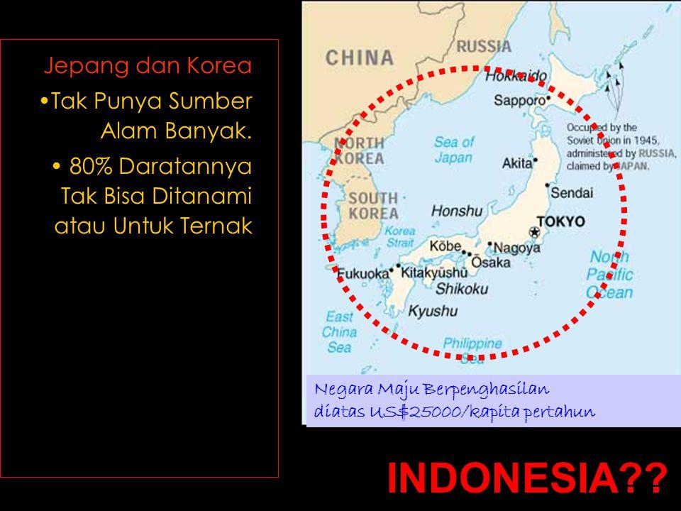 INDONESIA Jepang dan Korea Tak Punya Sumber Alam Banyak.