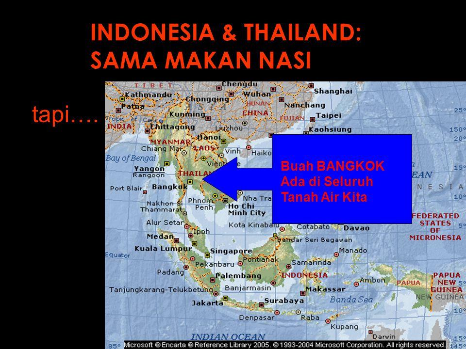 INDONESIA & THAILAND: SAMA MAKAN NASI tapi…. Buah BANGKOK