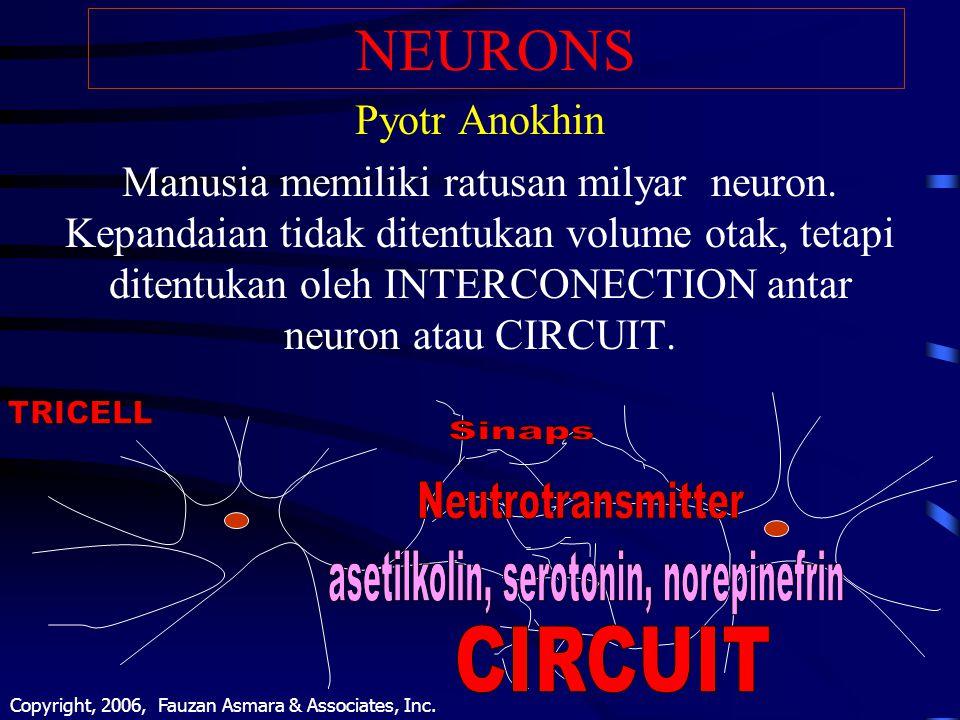 asetilkolin, serotonin, norepinefrin