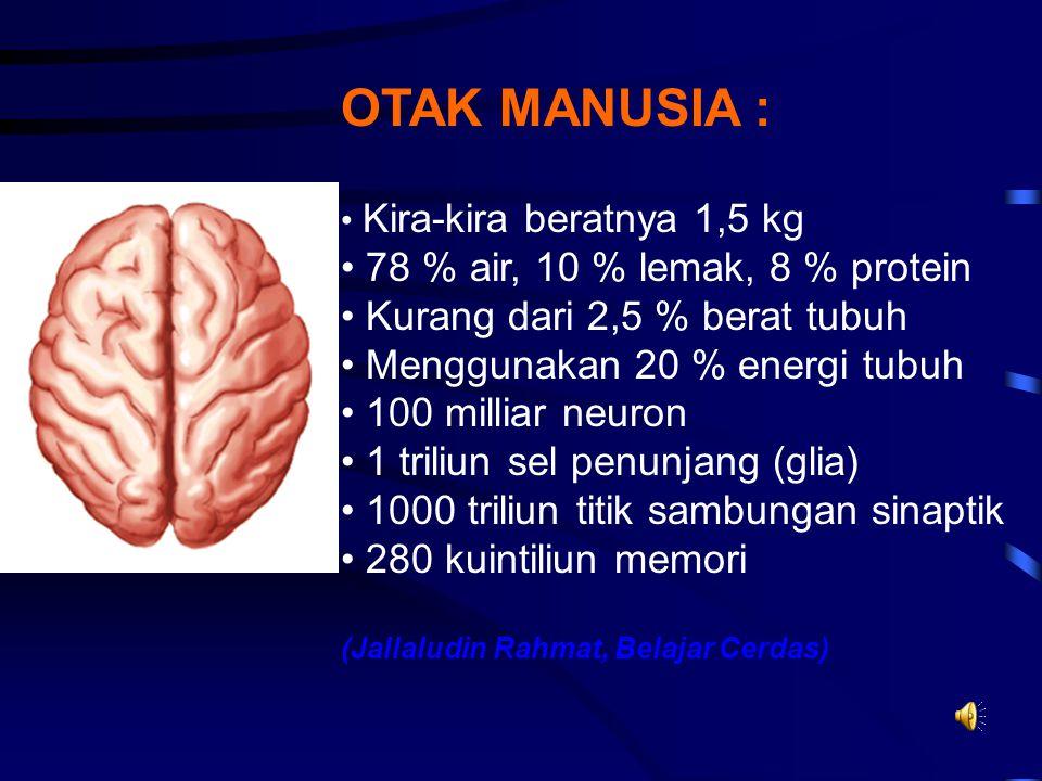 OTAK MANUSIA : 78 % air, 10 % lemak, 8 % protein