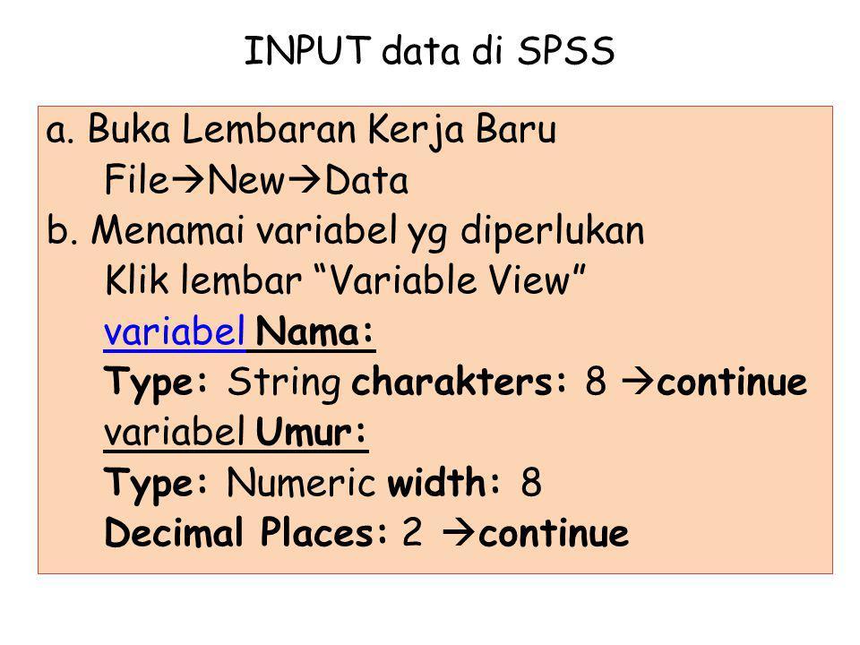 INPUT data di SPSS