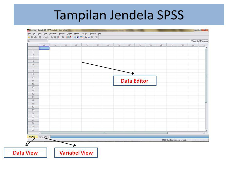 Tampilan Jendela SPSS Data Editor Data View Variabel View