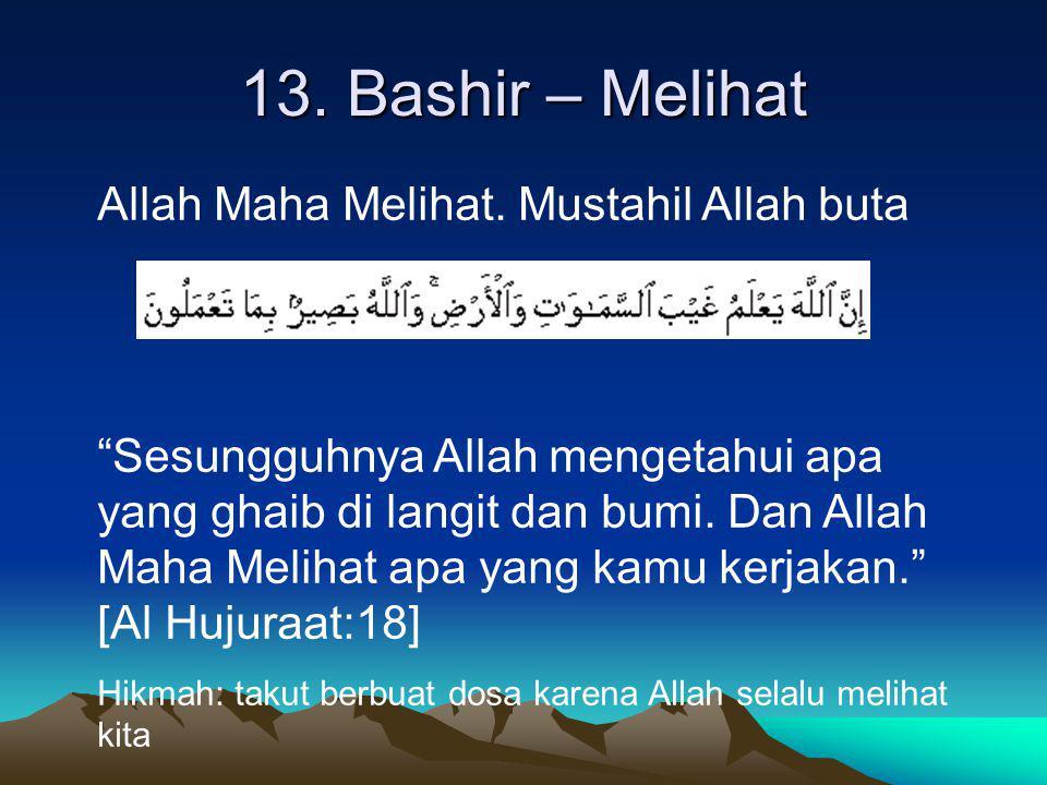 13. Bashir – Melihat Allah Maha Melihat. Mustahil Allah buta