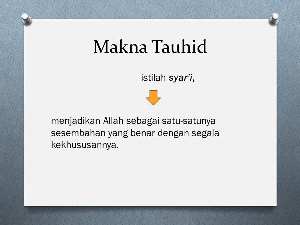 Makna Tauhid istilah syar'i, menjadikan Allah sebagai satu-satunya sesembahan yang benar dengan segala kekhususannya.