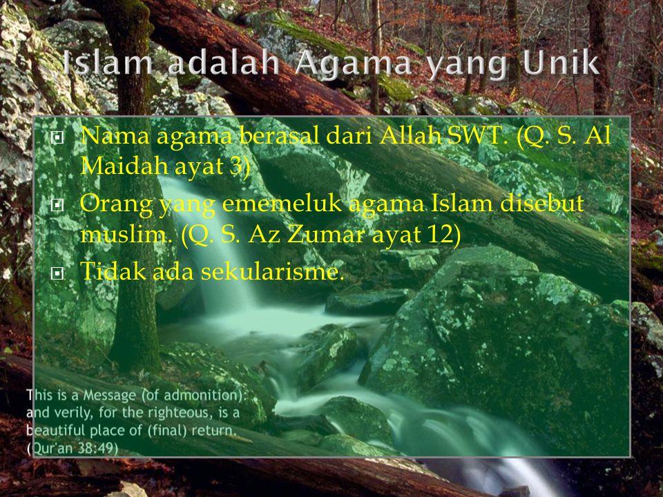 Islam adalah Agama yang Unik
