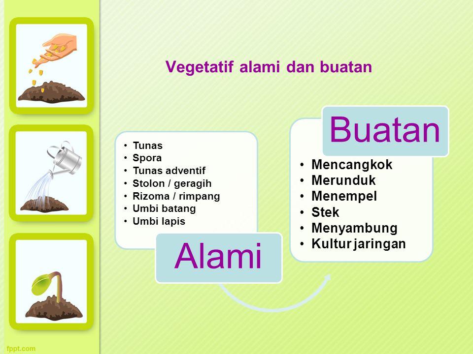 Vegetatif alami dan buatan