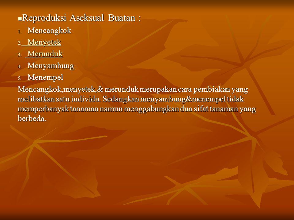 Reproduksi Aseksual Buatan :