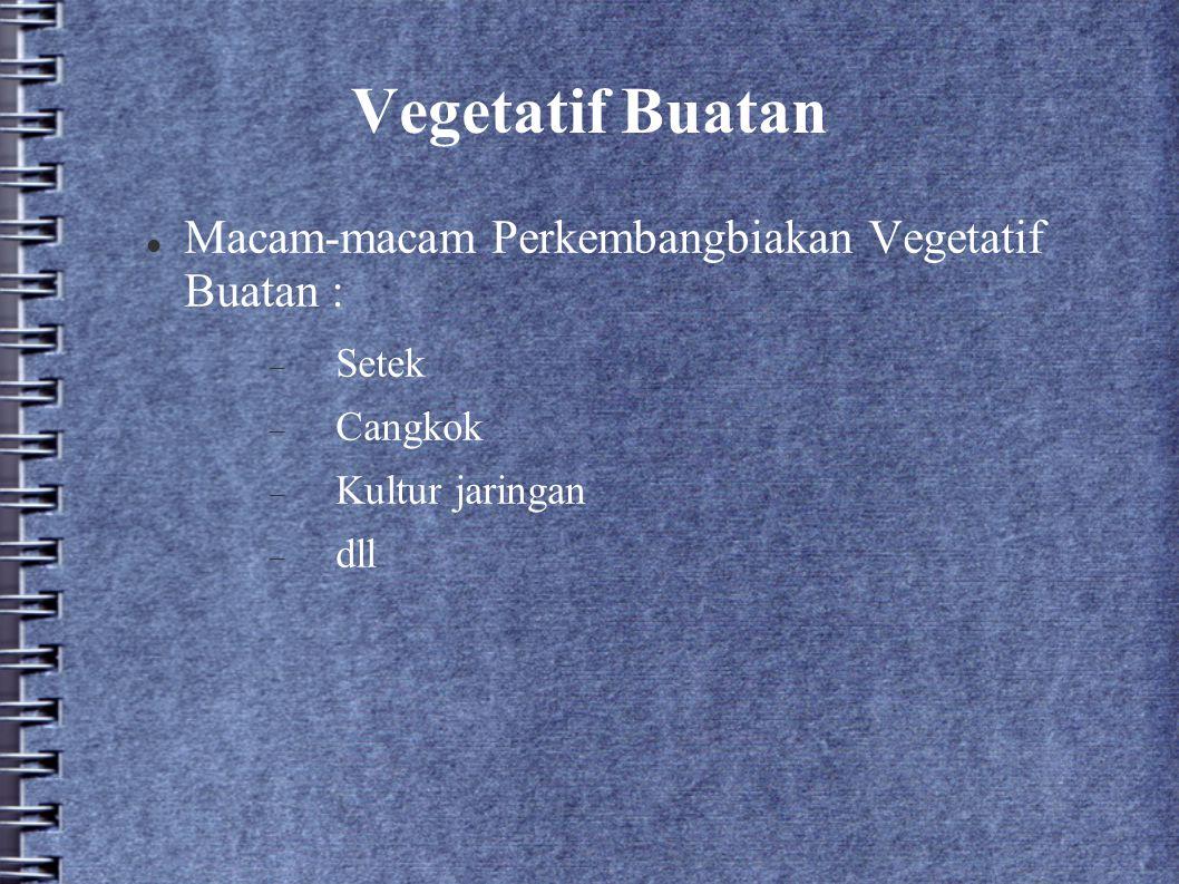 Vegetatif Buatan Macam-macam Perkembangbiakan Vegetatif Buatan : Setek