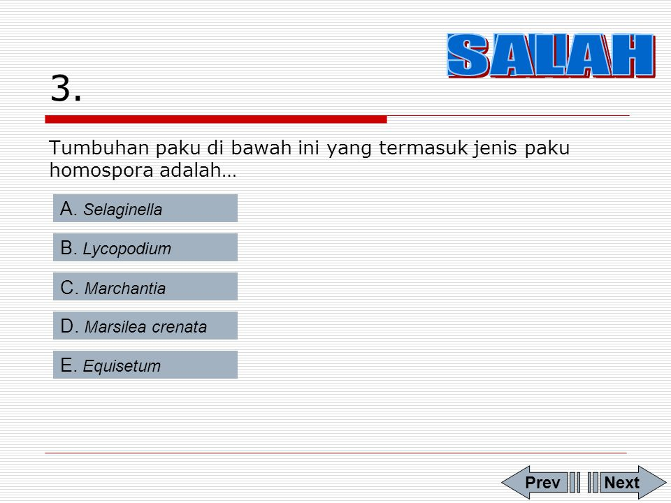 3. BENAR SALAH SALAH SALAH SALAH