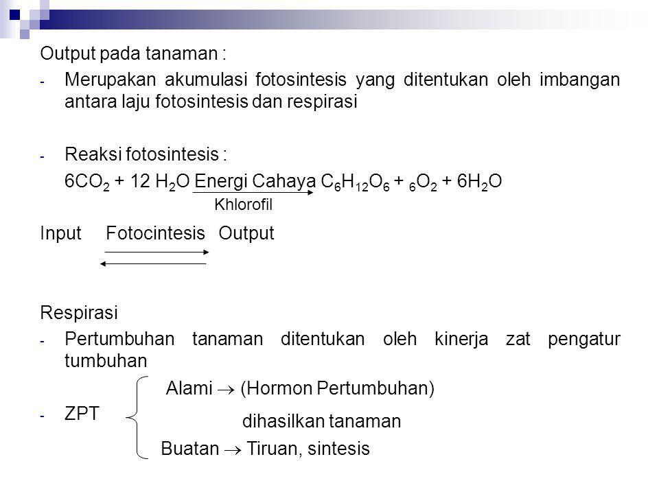 6CO2 + 12 H2O Energi Cahaya C6H12O6 + 6O2 + 6H2O