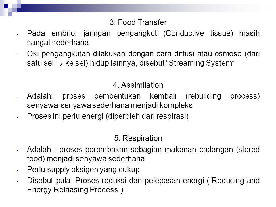 3. Food Transfer Pada embrio, jaringan pengangkut (Conductive tissue) masih sangat sederhana.