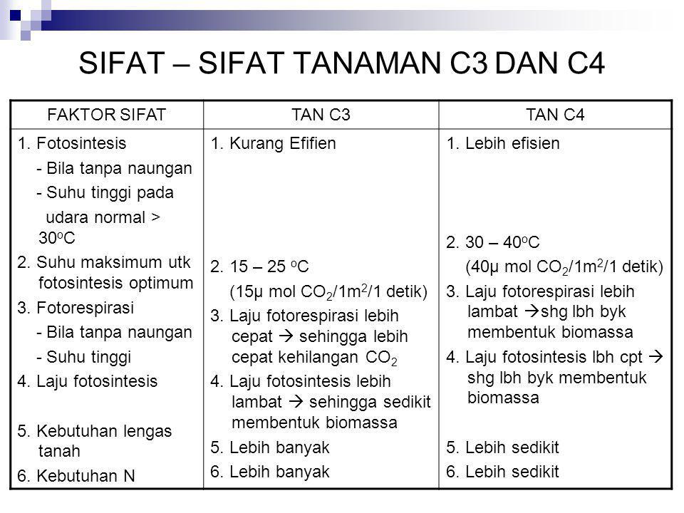 SIFAT – SIFAT TANAMAN C3 DAN C4