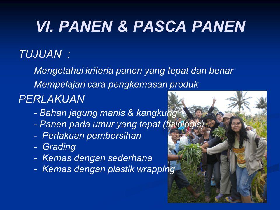 VI. PANEN & PASCA PANEN TUJUAN :