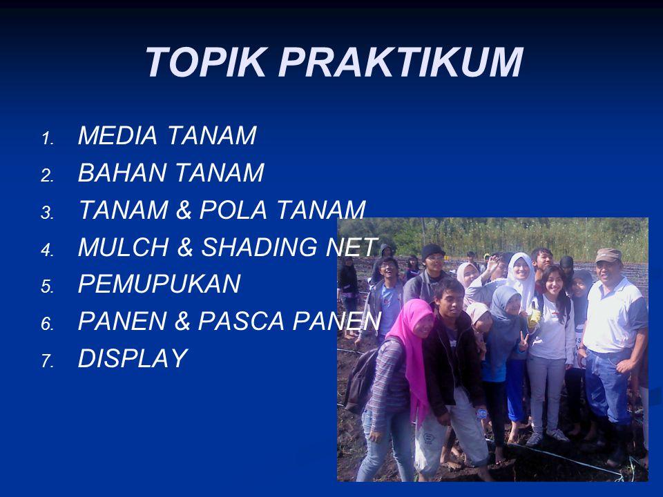 TOPIK PRAKTIKUM MEDIA TANAM BAHAN TANAM TANAM & POLA TANAM