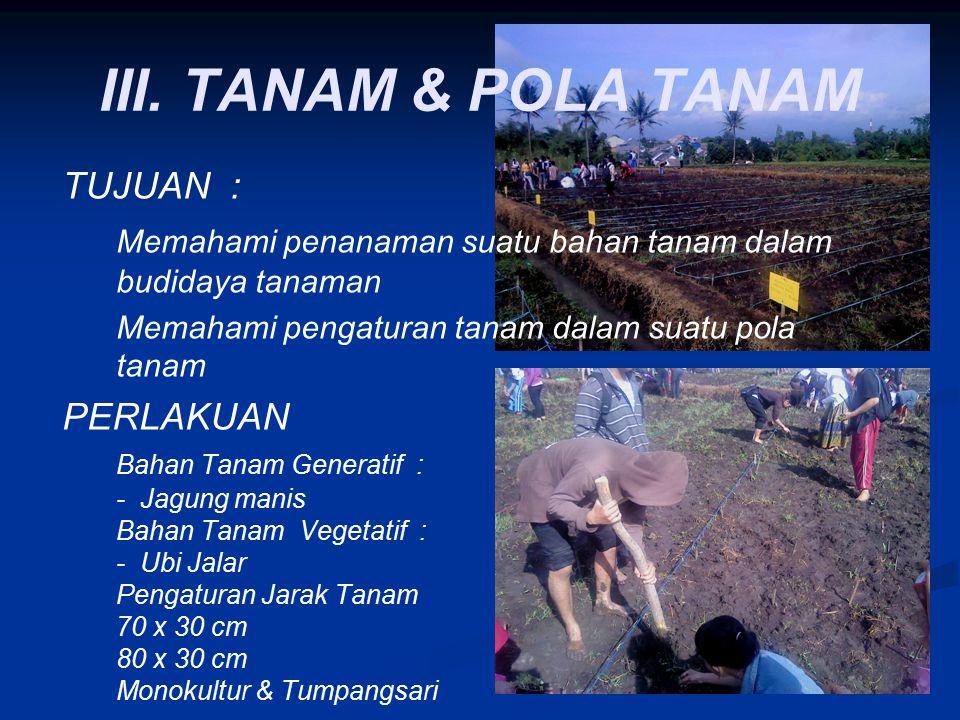 III. TANAM & POLA TANAM TUJUAN :