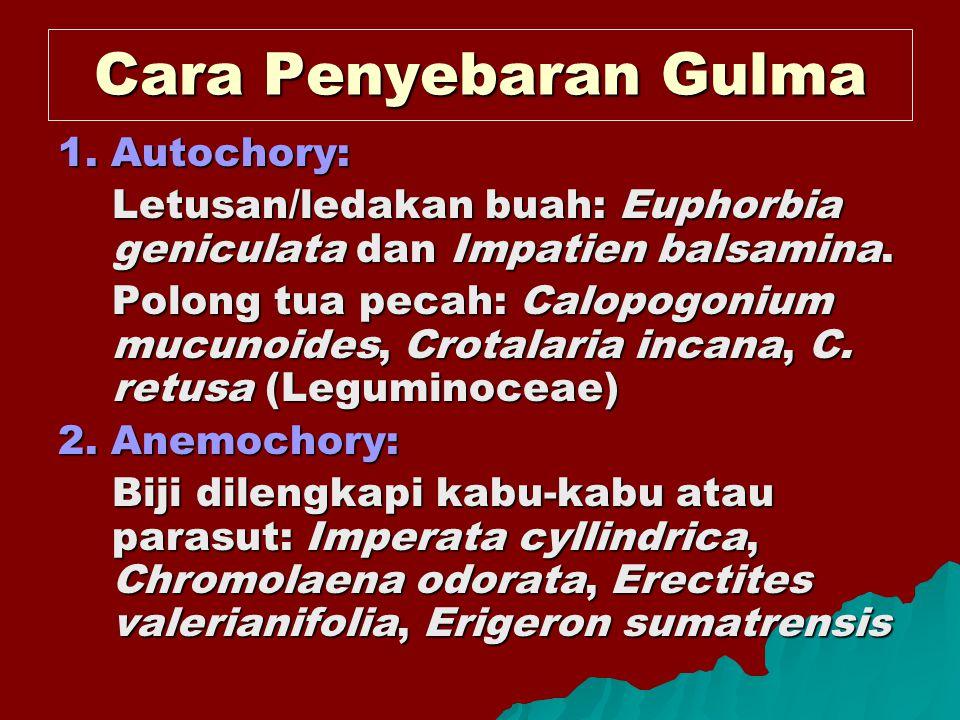 Cara Penyebaran Gulma 1. Autochory: