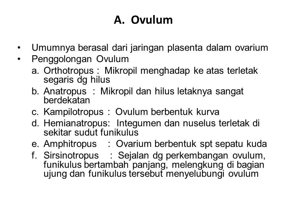 A. Ovulum Umumnya berasal dari jaringan plasenta dalam ovarium