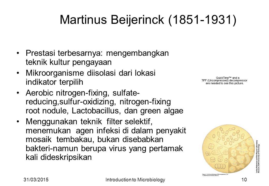 Martinus Beijerinck (1851-1931)