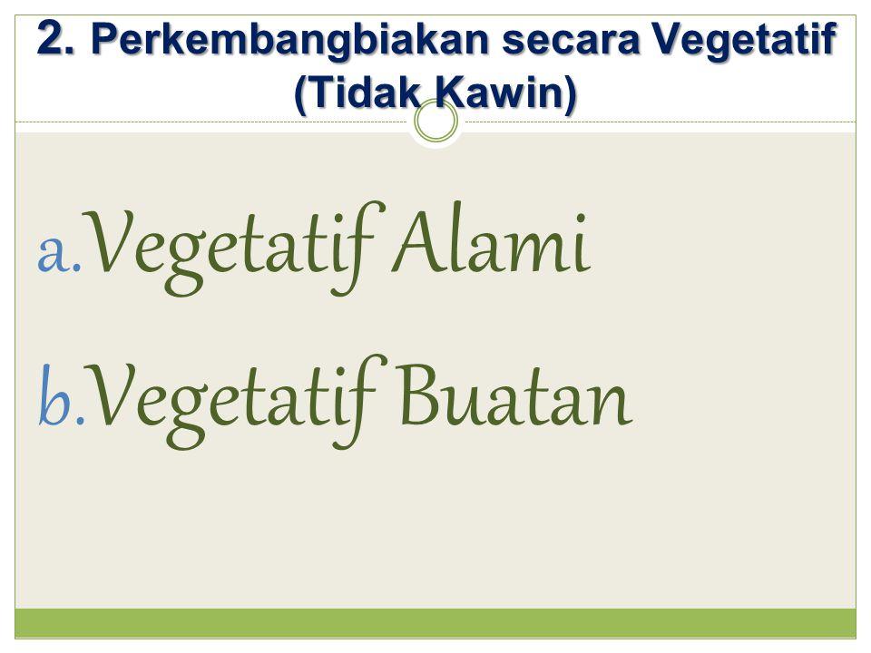 2. Perkembangbiakan secara Vegetatif (Tidak Kawin)