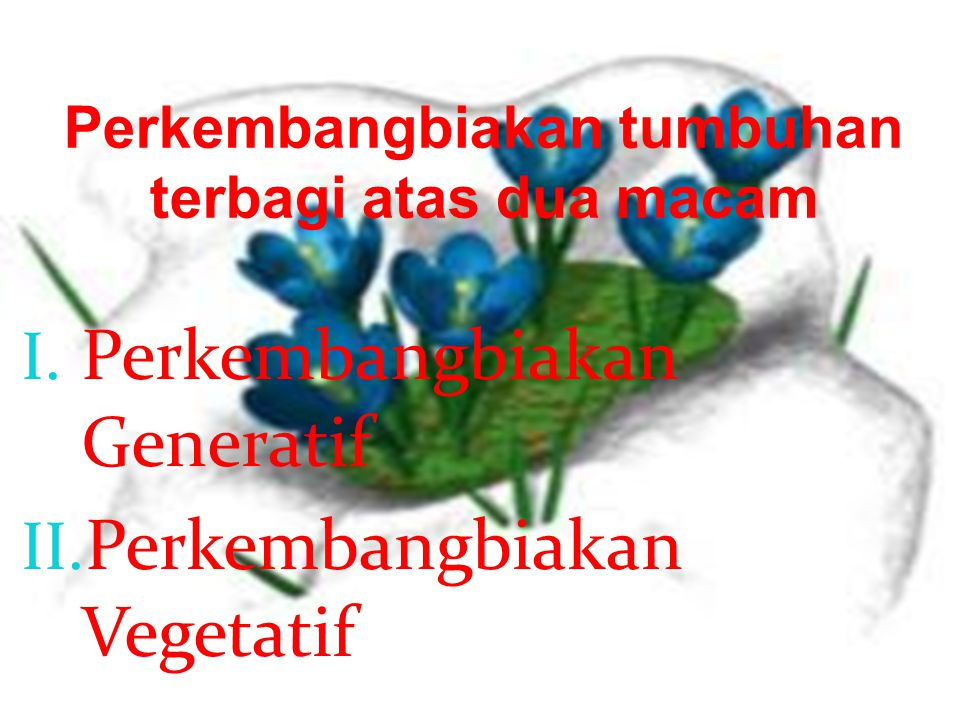 Perkembangbiakan tumbuhan terbagi atas dua macam