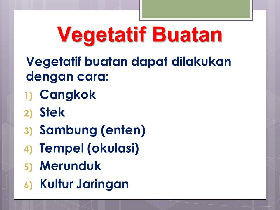 Vegetatif Buatan Vegetatif buatan dapat dilakukan dengan cara: Cangkok